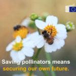 Ministri poľnohospodárstva opätovne potvrdili potrebu nového prístupu k ochrane včiel medonosných